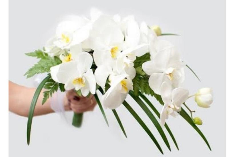 bouquet de novia con orquideas blancas