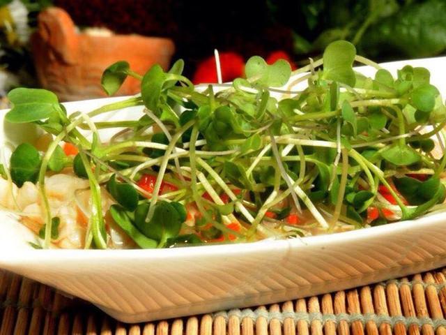 Menú vegano para su banquete de matrimonio, ¡delicias para compartir!