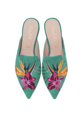 Ella bird of paradise on aqua , Pretty Ballerinas