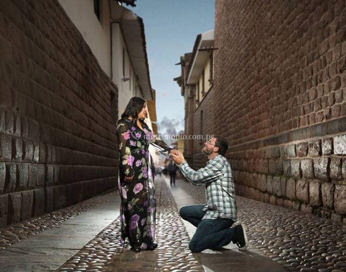 ¡Ella dijo sí! (Novios de USA)