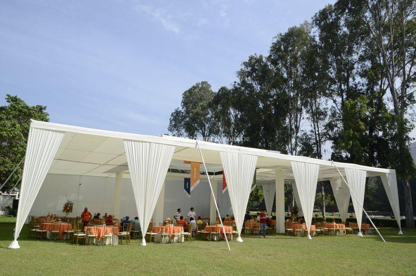 Ali eventos for Proveedor de toldos