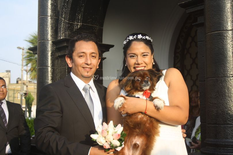 Novios dog lovers