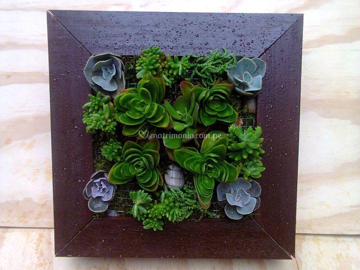 Cuadro con cactus