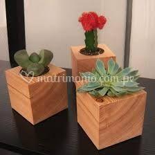 Kactus en madera