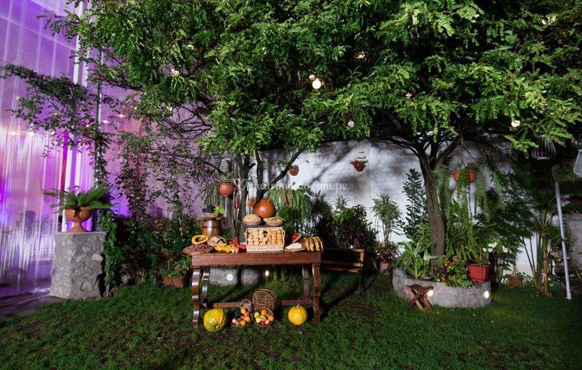 Mesa de frutas y panes