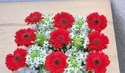 Elarteen Flores
