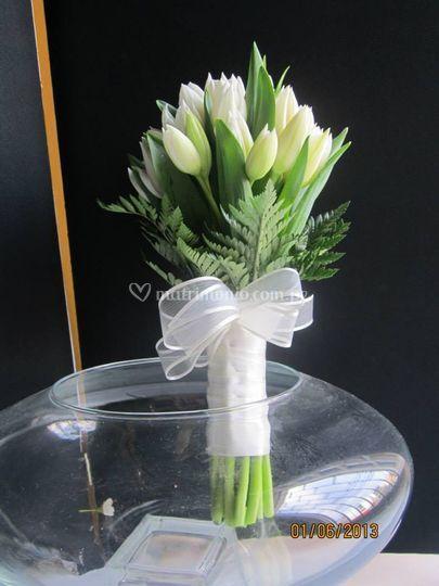 Bouquet de tulipanes blancos