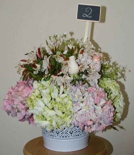 Flores Sean