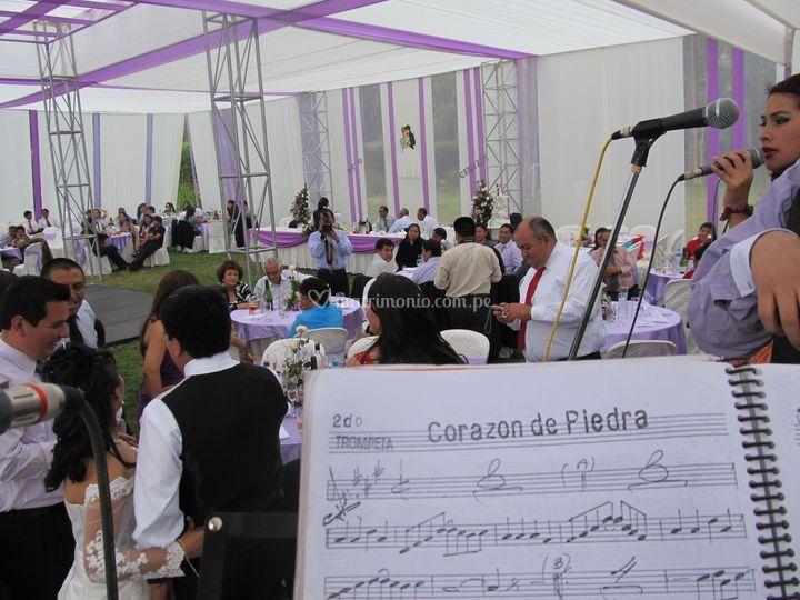 Matrimonio de gala