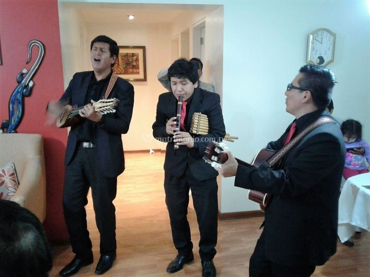 Ritmos peruanos, bolivianos