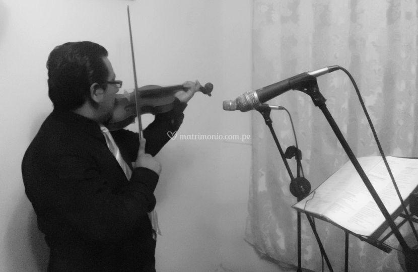 Violines para misa, recepción