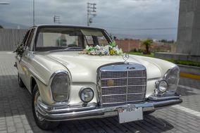 July Basurco - Mercedes Benz Clase 280 S