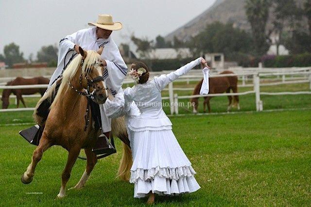 Baile de marinera a caballo