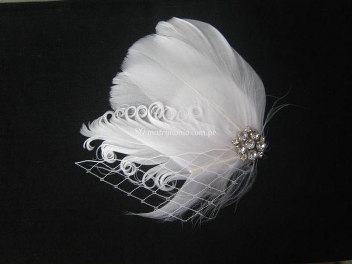 Hermoso tocado de plumas