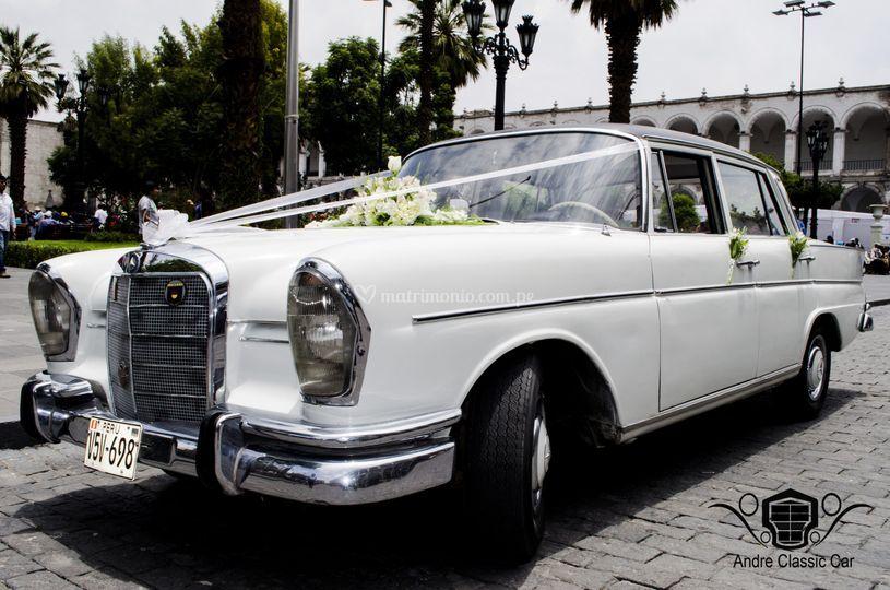 Mercedes 230s