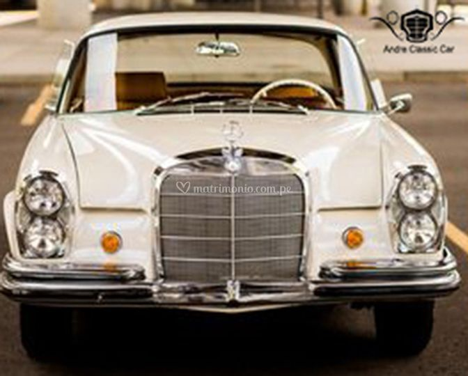 Fontal del Mercedes 230s
