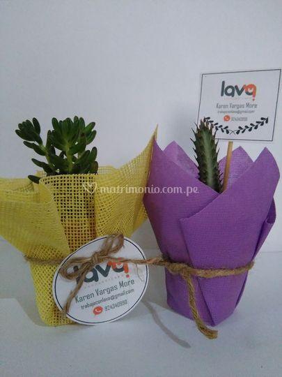 Plantas personalizadas