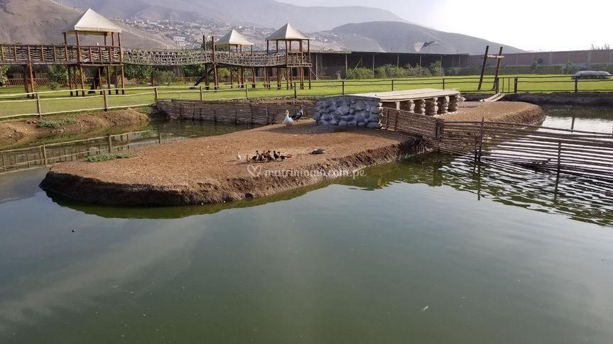 Vista a la laguna