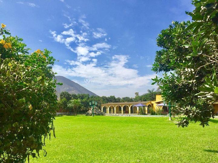 Amplia área verde para la boda