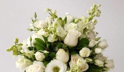 Di Flowers