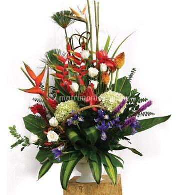 Ramos De Flores Exoticas Frases Bonitas De Flores De Amor Aprende