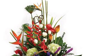 Florería Pétalos y Hojas