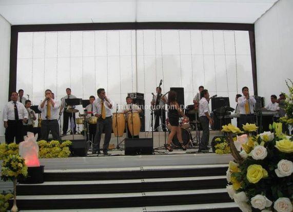 Vista general de la orquesta