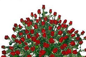 Floristperu