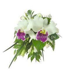 Orquídeas para ustedes