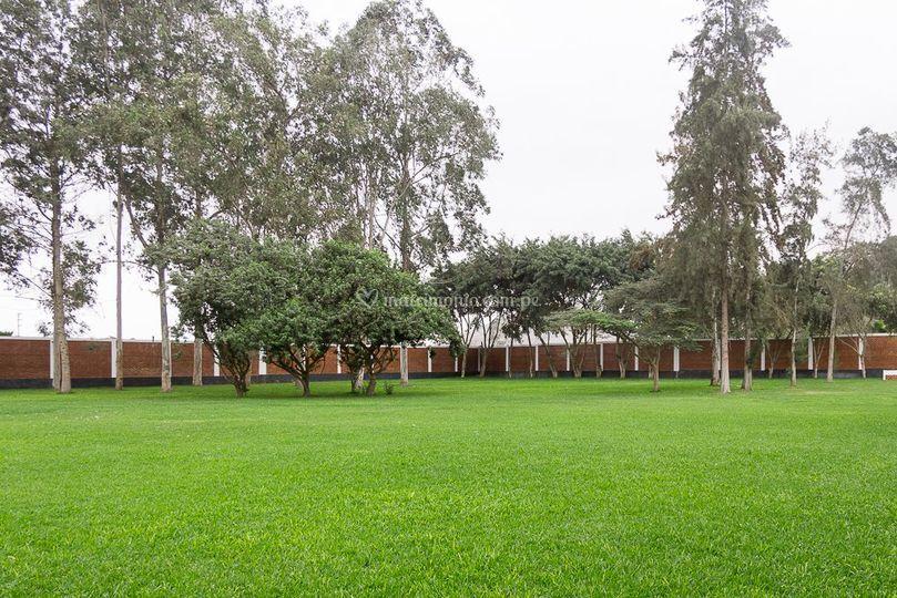 Jardín vista central