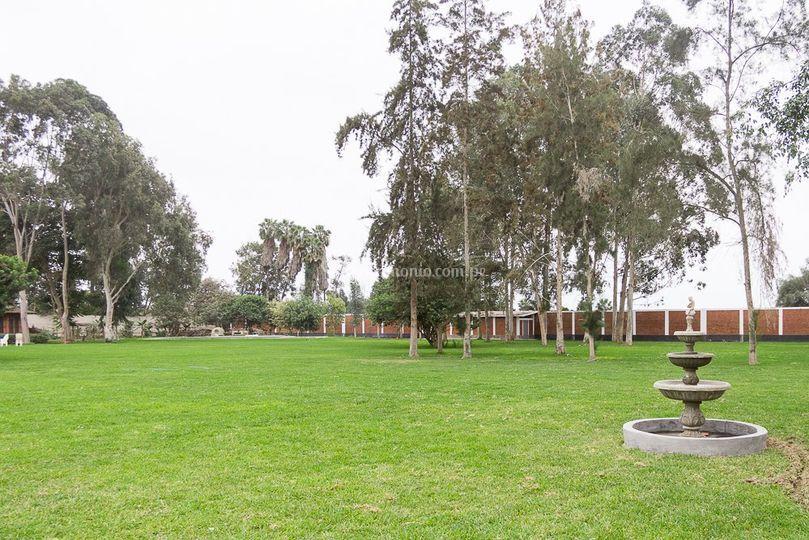 Jardín vista