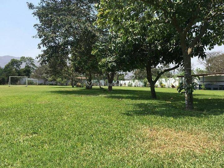 Jardín principal de hacienda