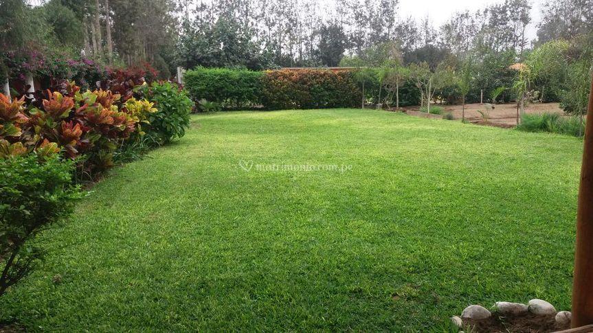 Jardín mediano