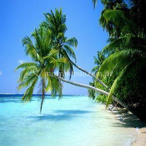 Paradisíacas playas