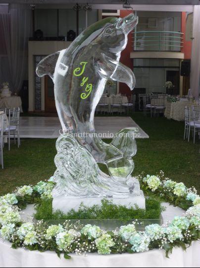 Delfín con iniciales