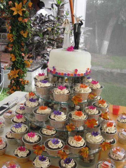 Cupcakes de campo