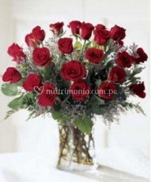 Rosas de todos los tipos