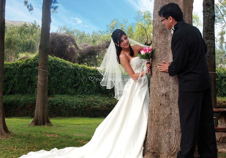 Recepción de Matrimonios HLS