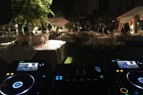 DJ Moo