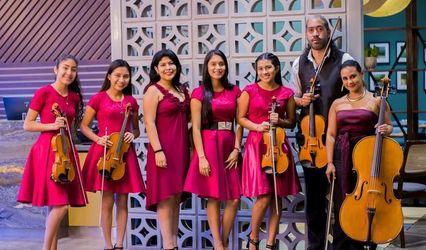 Violines La Boheme