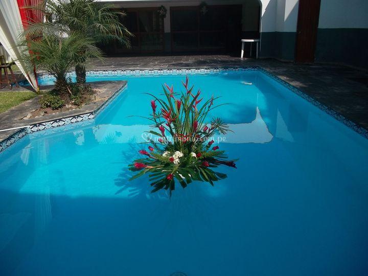Arreglos para la piscina