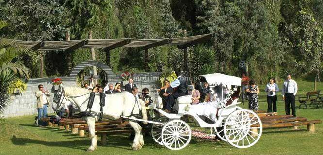 Carruaje para la novia