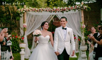 Blue Velvet Wedding 1