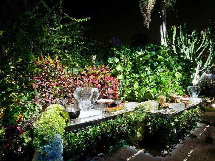 Buffet con plantas