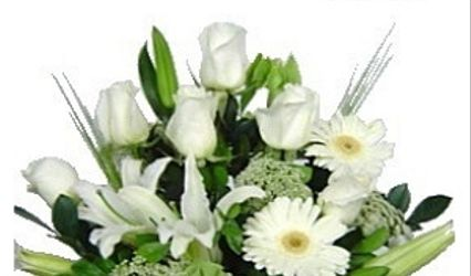 Floreria Floresy