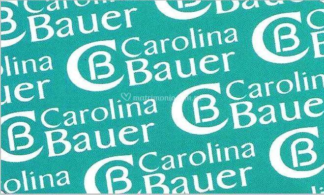 Carolina Bauer Arte, Diseño