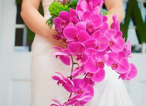 Solo orquídeas en bouquet