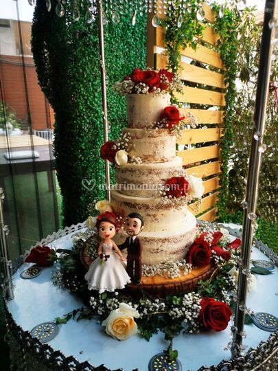 Hermosa torta desnuda