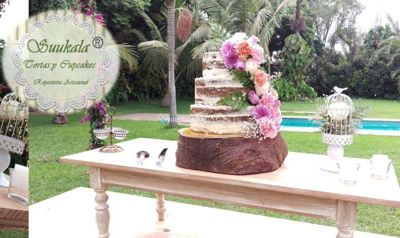 Naked cake Colorido matrimonio