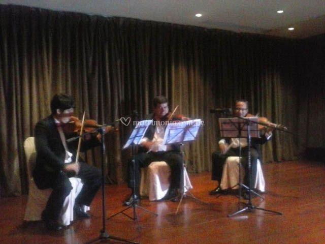 Violinistas para el banquete
